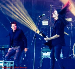 Toseland-2