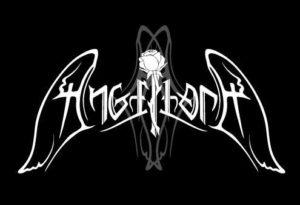3540329059_logo